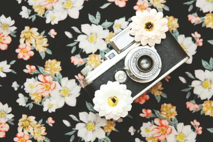 A feminine styled free stock photo of a camera in flowers from Unsplash.com.